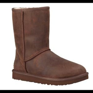 Ugg brown classic short leather
